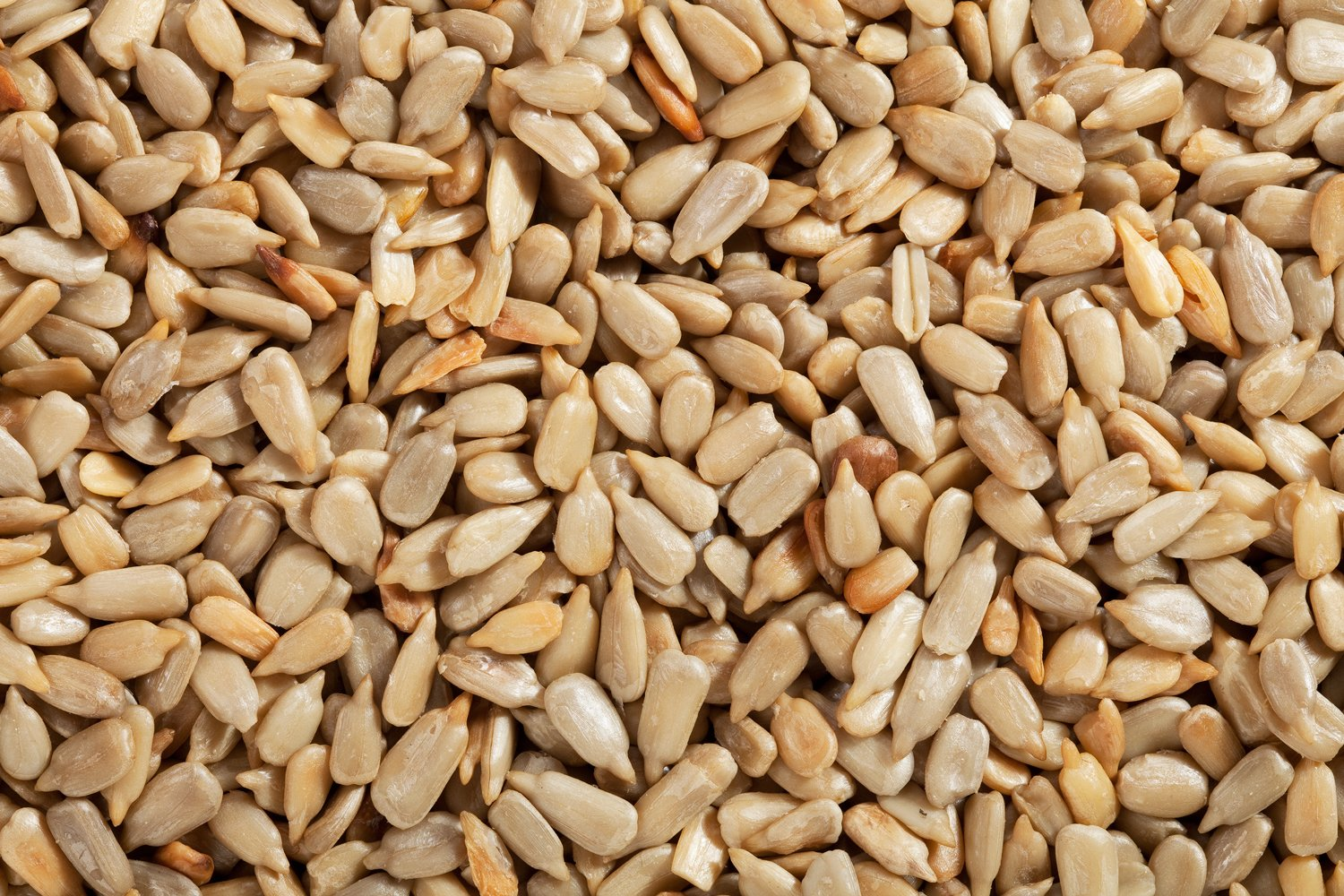 How are sunflower seeds shelled